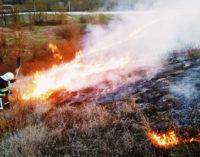 Кабмин усилит ответственность за пожары под Чернобылем