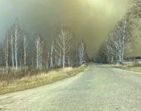 В Чернобыльской зоне увеличивается очаг пожара: в лесу уровень радиации выше нормы в 17 раз – журналист