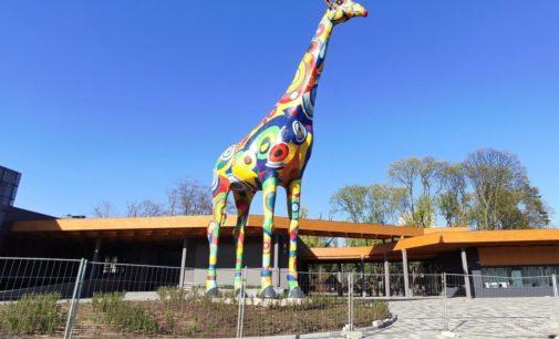 Сегодня после реконструкции открывается Киевский зоопарк