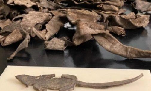 Археологи узнали, чем игрались дети в Древнем Риме